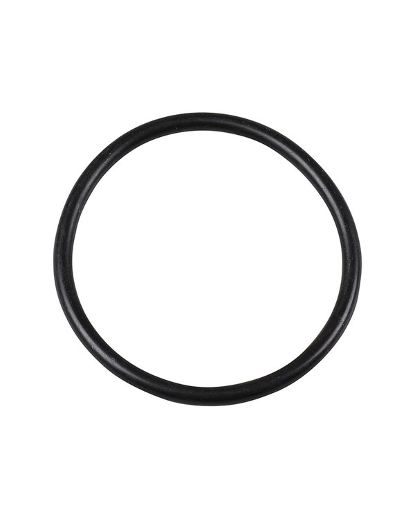O-Ring Dichtung für Tankgeber