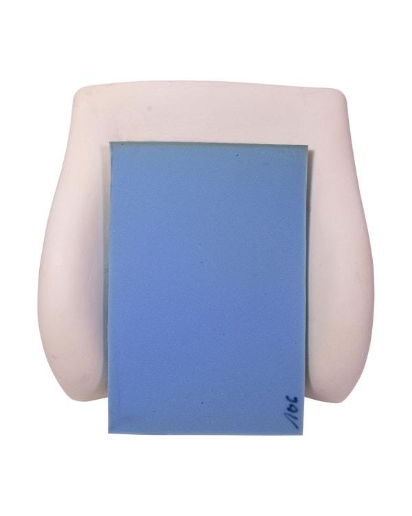 Seat Backrest Foam Padding Set