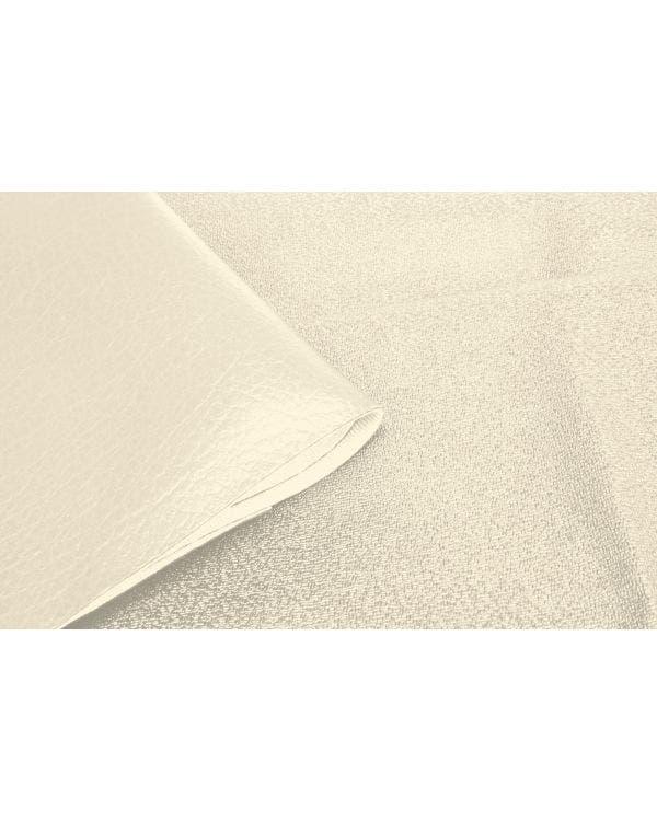 Dachhimmel in weißem Vinyl