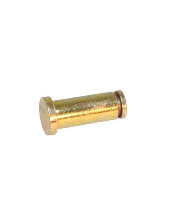 Tailgate Strut Pin