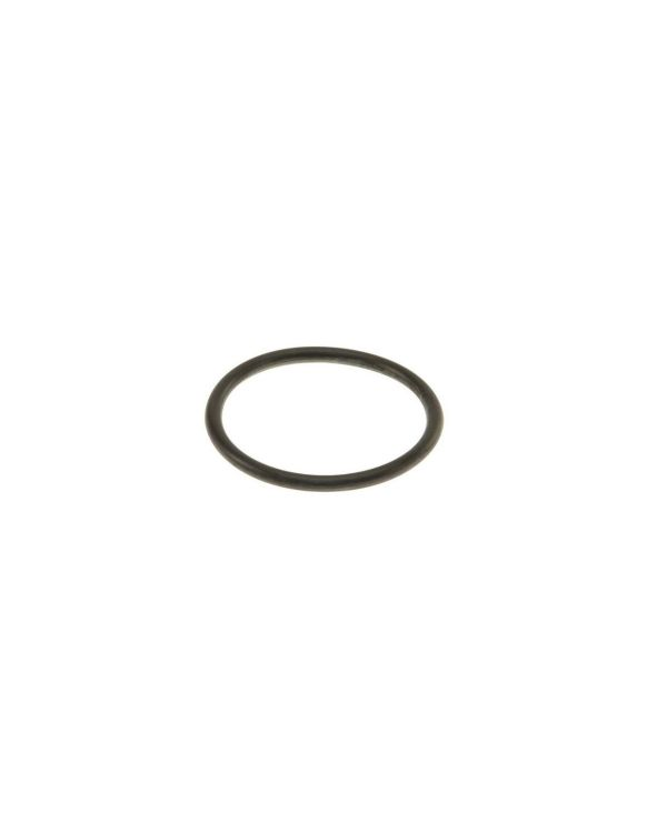 O Ring Seal for In Tank Fuel Filter